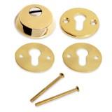 Броненакладка для ц/м Апекс Protector Basic-G латунь
